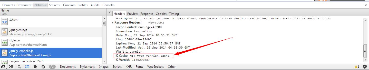 http加速器Varnish的vcl配置小记(lnmp环境)